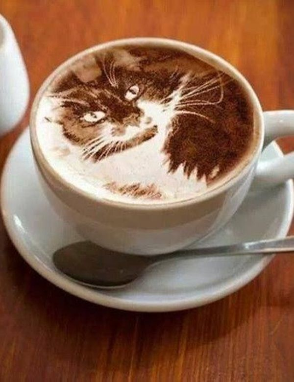 photo tuxedocatcoffee_zpskjgv3xhv.jpg