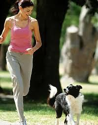 Camine con su perro