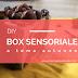 DIY box sensoriale a tema autunno: giochi per bambini low cost