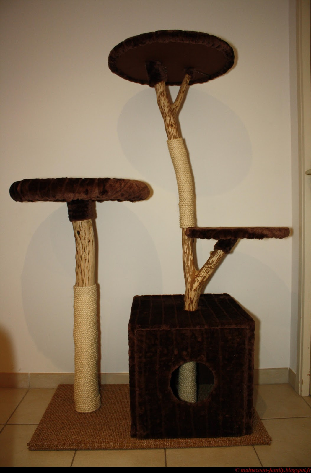 vends arbre chat en bois naturel. Black Bedroom Furniture Sets. Home Design Ideas