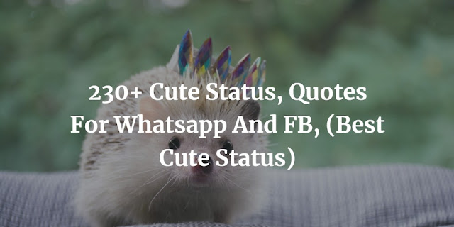 230+ Cute Status, Quotes For Whatsapp And FB, (Best Cute Status)