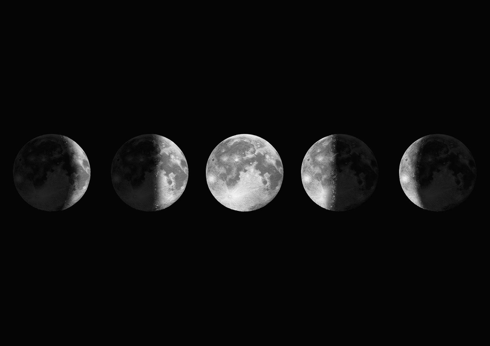 Illustraciencia el ciclo lunar carmen sala bonal for Ciclo lunar julio 2016