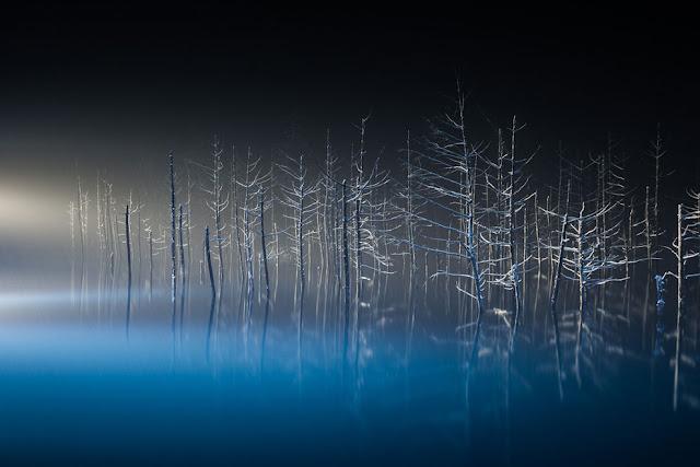 10 Karya fotografi travel menakjubkan dari National Geographic 2016