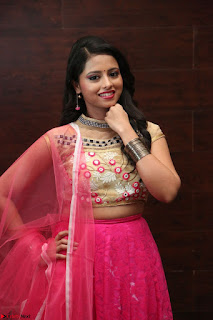 Geethanjali sizzles in Pink at Mixture Potlam Movie Audio Launch 022.JPG