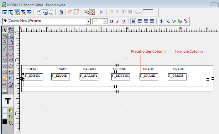 Placeholder Column In Oracle Reports - Oracle Appplications