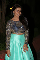 Nikki Galrani in Green Skirt  Top at Marakathamani music launch ~  Exclusive (53).JPG