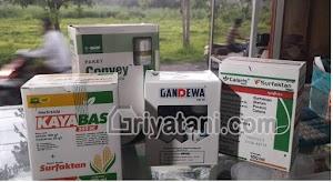 Herbisida Pada Jagung, Jenis dan cara penggunaanya