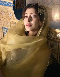 Biodata Sonarika Bhadoria sebagai pemeran Anarkali