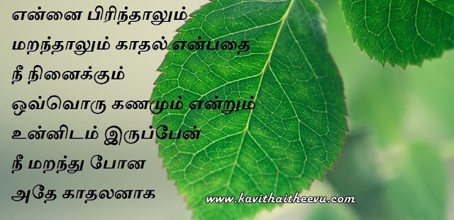Tamil latest kathal kavithai and Images 2016, tamil new kavithaigal, tamil new love kavithai, tamil love poem images 2016, download Cute Tamil love poems