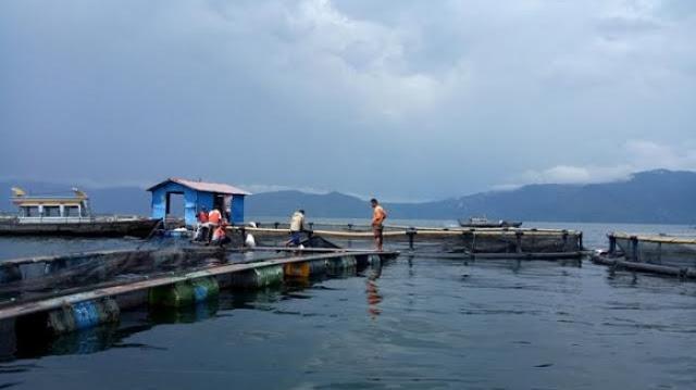 GASWAT! Air Danau Toba Tercemar Limbah, Warga Terpaksa Jalan Kaki 3 KM untuk Dapat Air Bersih