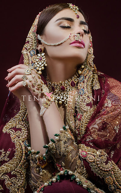 Tena-durrani-winter-bridal-wear-dresses-collection-2017-for-women-1