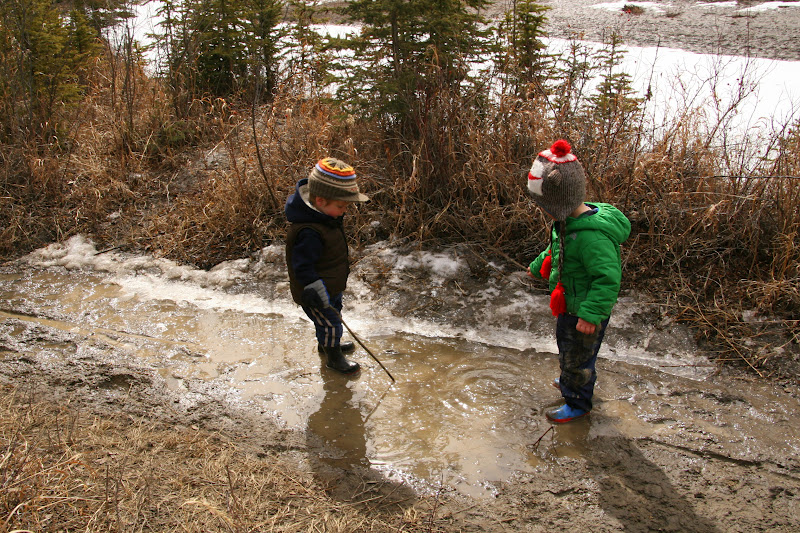 Family Adventures In The Canadian Rockies Snow Puddles