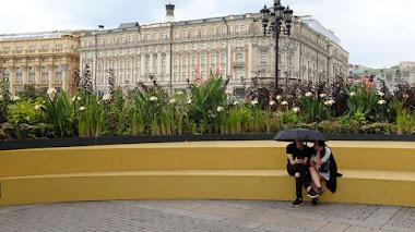 Flower Jam: coloridos jardines urbanos en las calles de Moscú