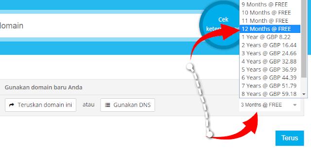 Cara Buat Domain Gratis di Freenom Berhasil