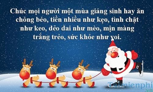 giáng sinh và năm mới khỏe như voi nhé mọi người