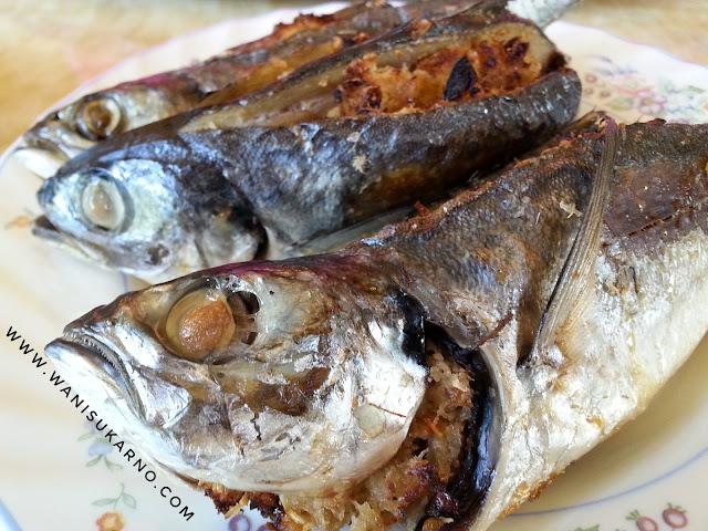 ikan cencaru sumbat bakar air fryer