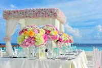 usaha sewa tenda pengantin, bisnis sewa tenda pengantin, bisnis tenda pengantin, tenda pengantin, modal usaha tenda pengantin