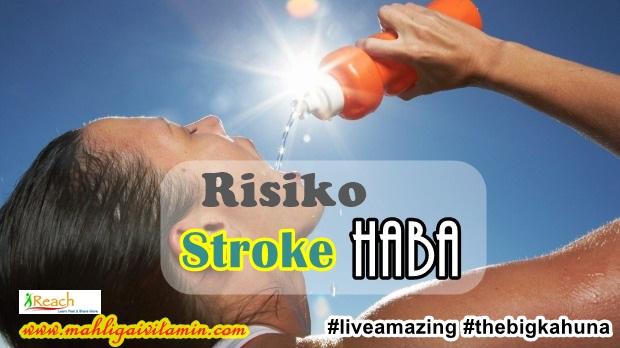 stroke haba