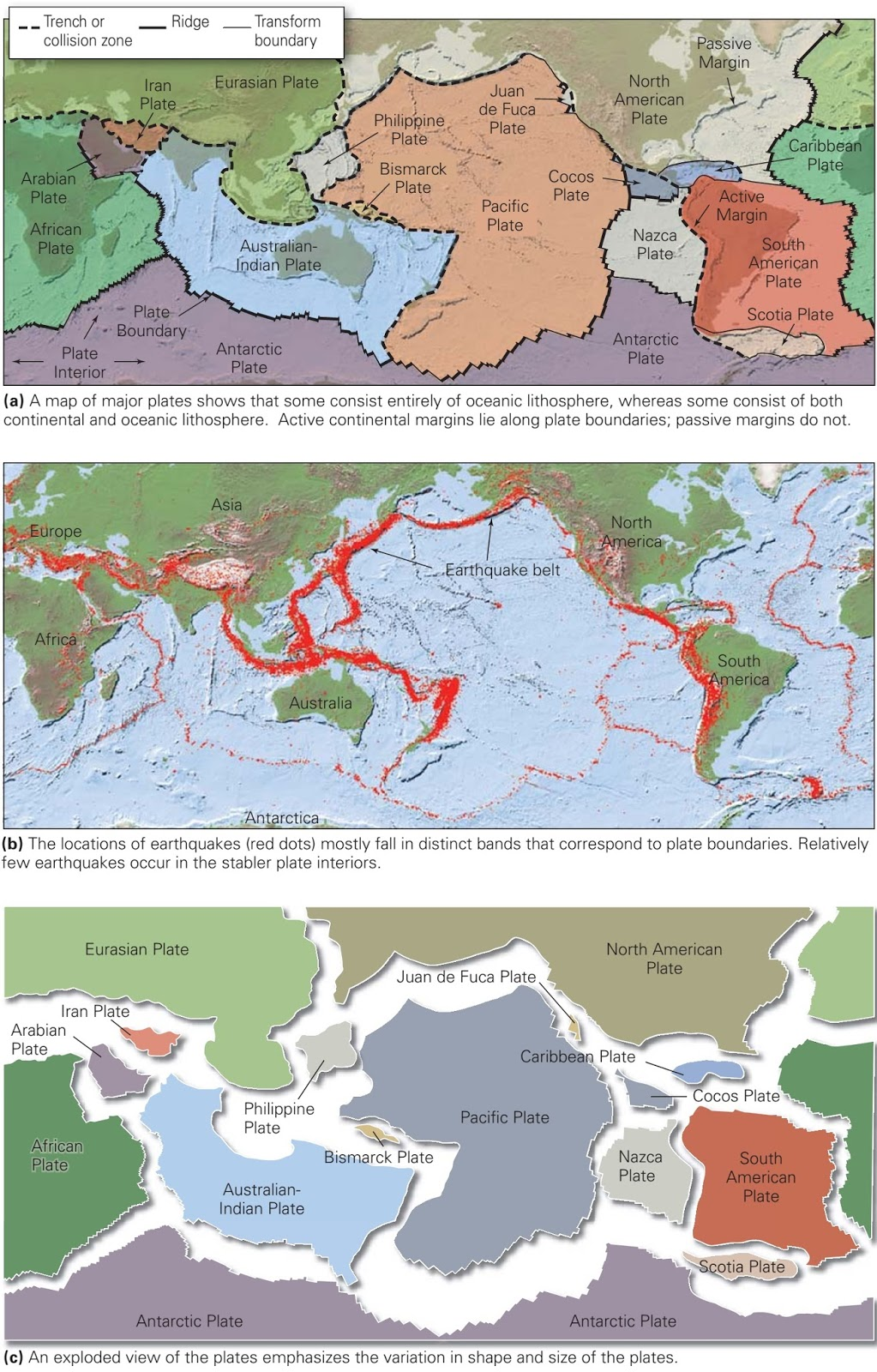 The Location Of Plate Boundaries And The Distribution Of Earthquakes