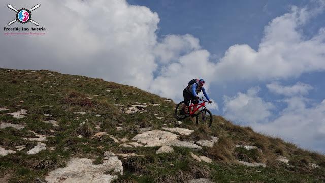 Trail Guide Gardasee