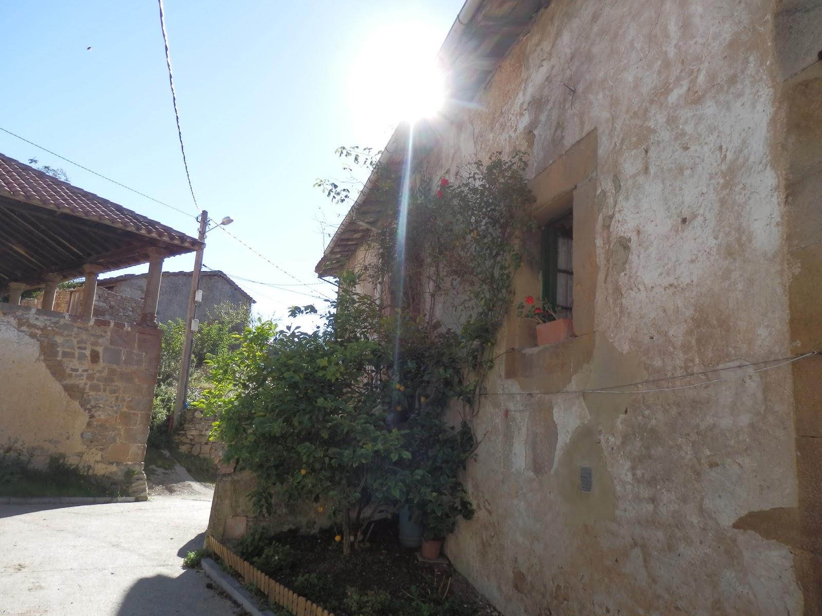 Xurde morn arbazal el antiguo mesn de los cistercienses justo al lado a la derecha del camino est el antiguo mesn de los cistercienses con escalera de piedra y que ostenta el escudo de la orden en lo alto de fandeluxe Images