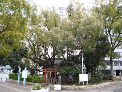 うつぼ楠永神社