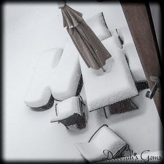Winter 2 - photo by Deborah Frings - Deborah's Gems