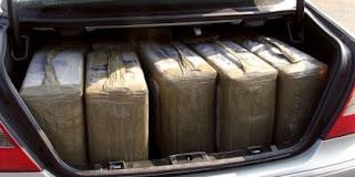 Saisi de 300 kg de haschisch au Maroc