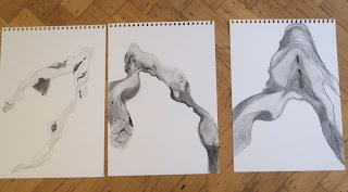 Three studies of smooth driftwood