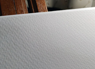 ホワイトアイビスの表面