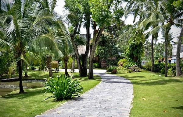Binh Quoi tourist village 13