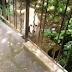 Χαροκόπι Ιωαννίνων: Η αλυσοδεμένη  επί 18 χρόνια σκυλίτσα ...Εκλιπαρεί να φύγει απο εκεί! Ας τη βοηθήσουμε !
