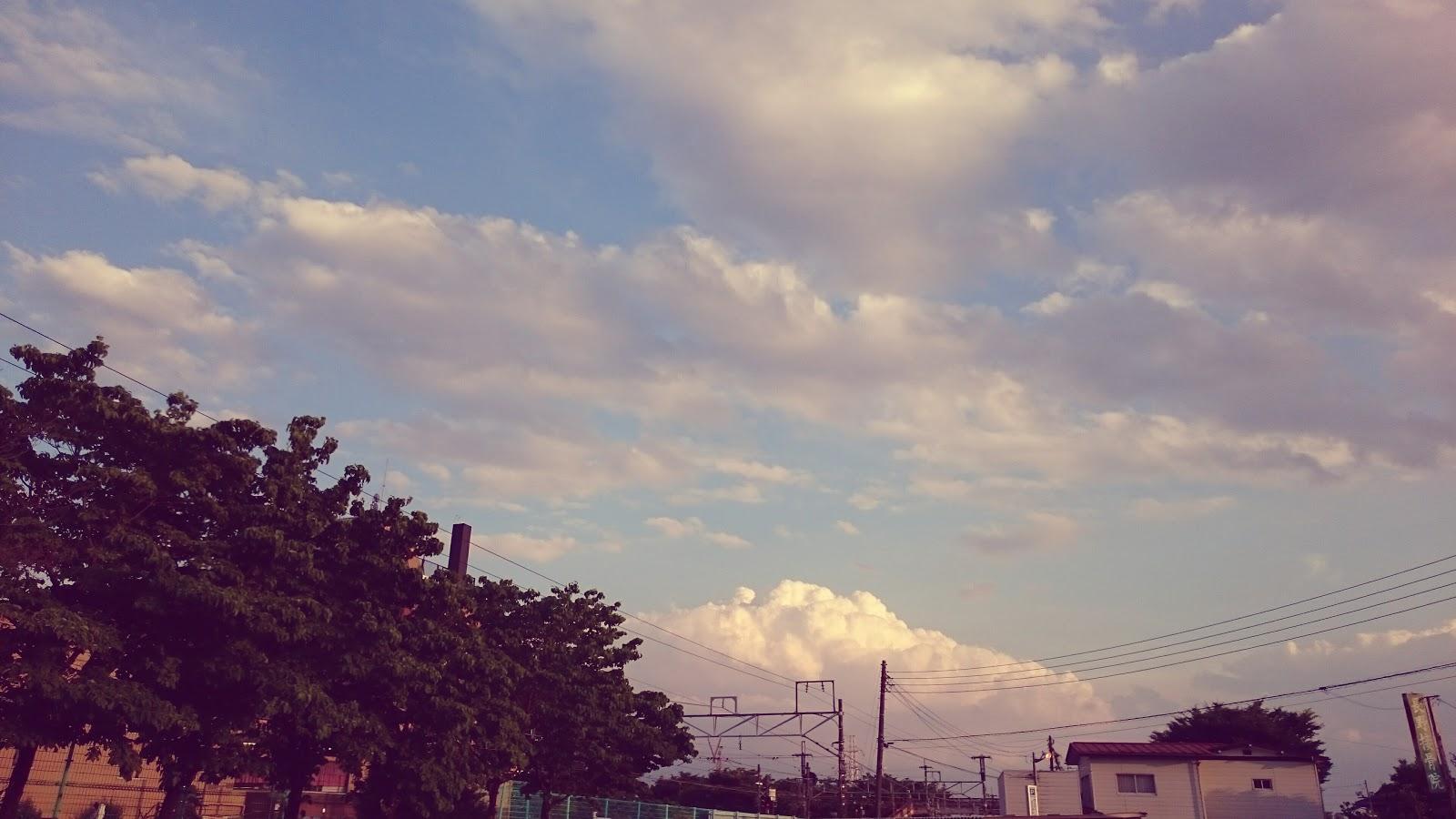 初夏の爽やかな帰り道