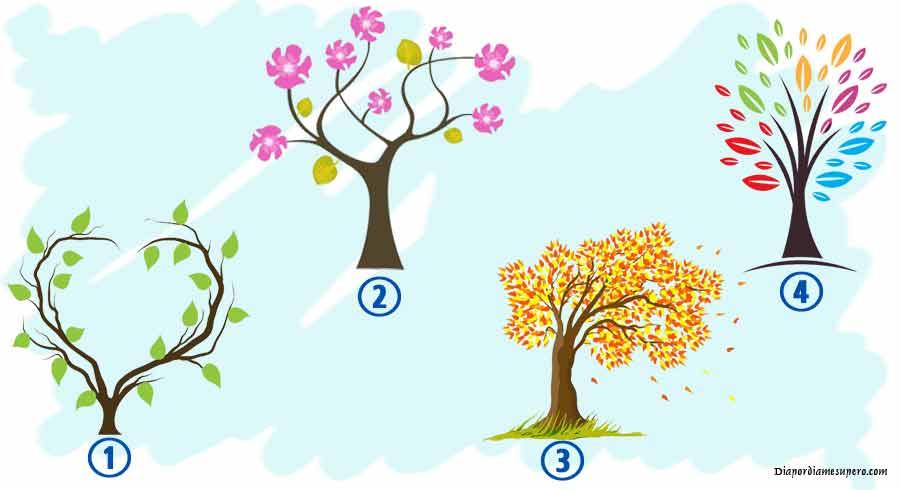 Test: Descubre que dice de ti el árbol que elijas