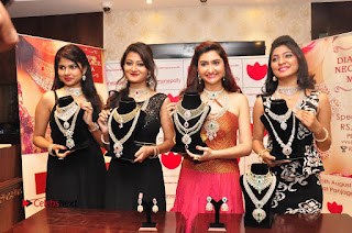 Manepally Jewellery Exclusive Diamond Collection Launch ~ Celebs Next