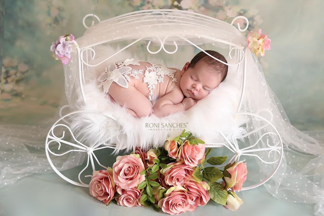 newborn carruagem