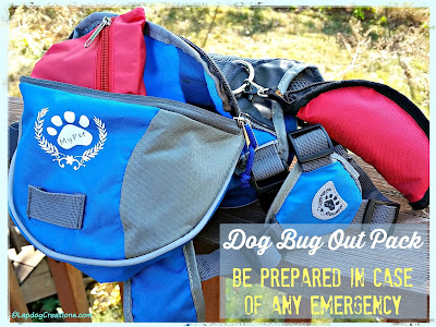 dog bug out pack for emergencies