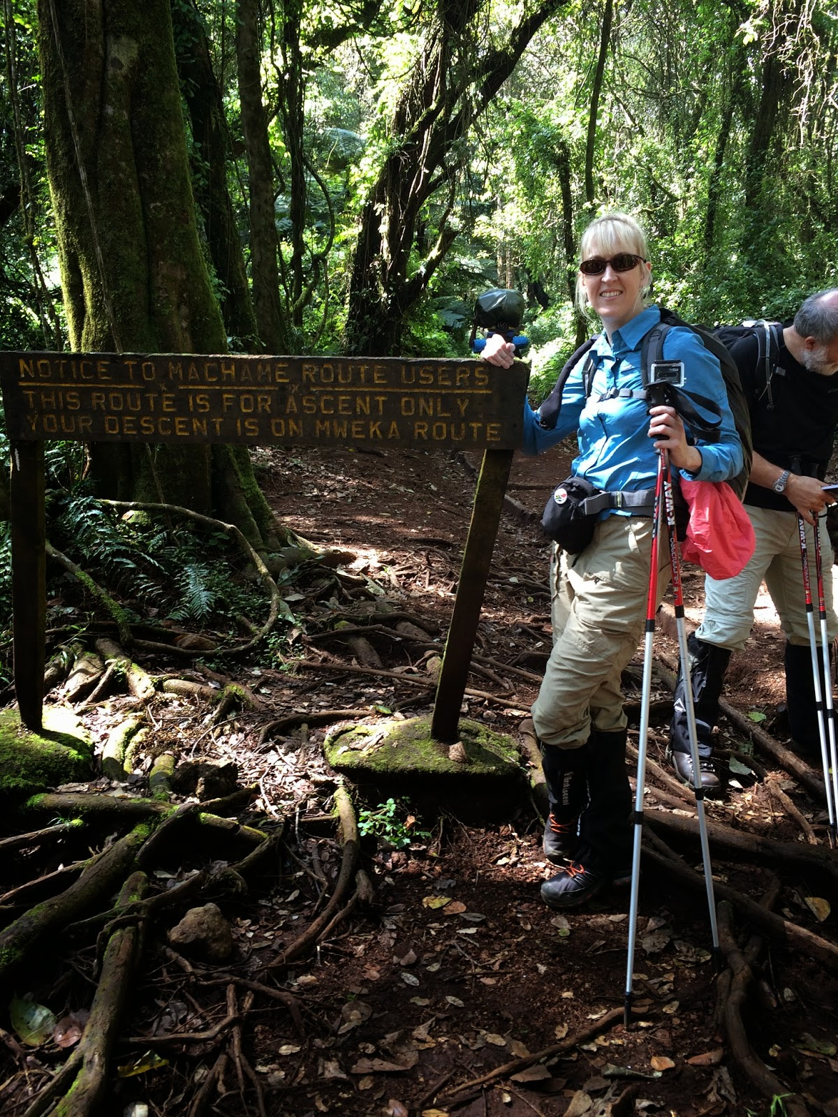 hiking poles, Kilimanjaro