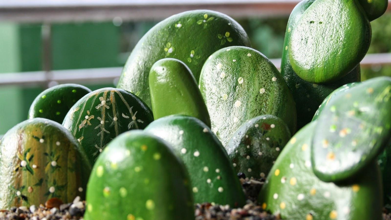 En el mundo de joly - Informacion sobre los cactus ...