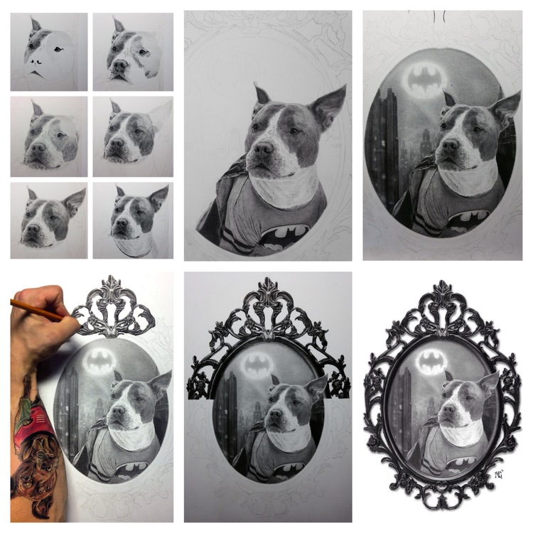 14-Batman-the-Pit-Bull-WIP-Matthew-Greskiewicz-Realistic-Graphite-and-Charcoal-Drawings-www-designstack-co