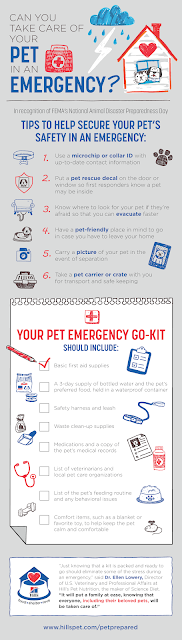 Items that need to go in a pet emergency kit