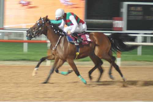 Adana at yarışı sonucu