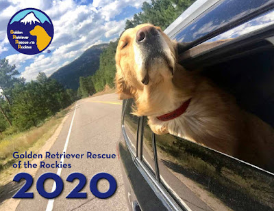 cover of Bolded Retrieve Rescue of the Rockies 2020 calendar, showing a golden retriever with its head out of the car