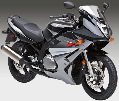 Miraculous Suzuki Gs500F Suzuki Motorcycles Motorcycles And Ninja 250 Camellatalisay Diy Chair Ideas Camellatalisaycom
