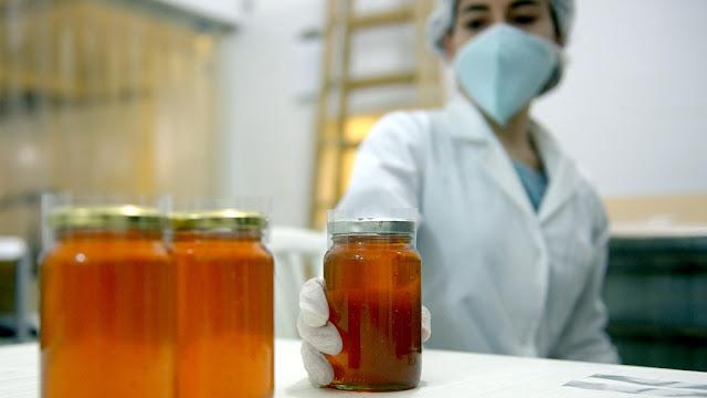 Después de una década la Argentina podrá exportar miel fraccionada a Brasil