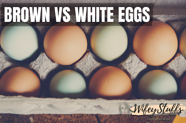 brown egg,brown eggs vs white eggs,white eggs,white egg,brown eggs,brown vs white eggs,white vs brown eggs,brown egg vs white egg,brown,brown eggs v white eggs,egg,white egg vs brown egg,are white eggs healthier than brown eggs,are brown eggs healthier than white eggs,difference between white and brown eggs,white eggs vs brown eggs,are brown eggs better,brown rice vs white rice,white