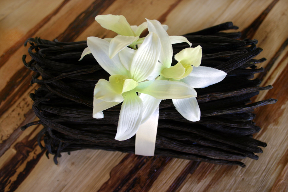 Small business saturday vanilla bean giveaway and coupon code photo courtesy of indrivanilla fandeluxe Images