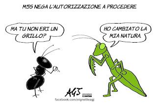 salvini, m5s, diciotti, autorizzazione a procedere, giunta per l'autorizzazione a procedere, politica, vignetta, satira