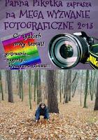 http://misiowyzakatek.blogspot.com/2013/11/jesien-wyzwanie-foto.html